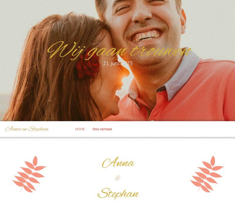 websiteAnna-en-Stephan